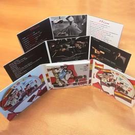 100 CD Digifile Album 3 ante cartoncino