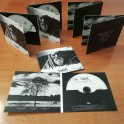 100 CD Digifile Album 2 ante cartoncino
